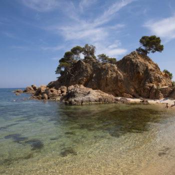 Platja de Cap Roig, Sant Antoni de Calonge. Alex Tremps.Arxiu d'Imatges Patronat de Turisme Costa Brava Girona