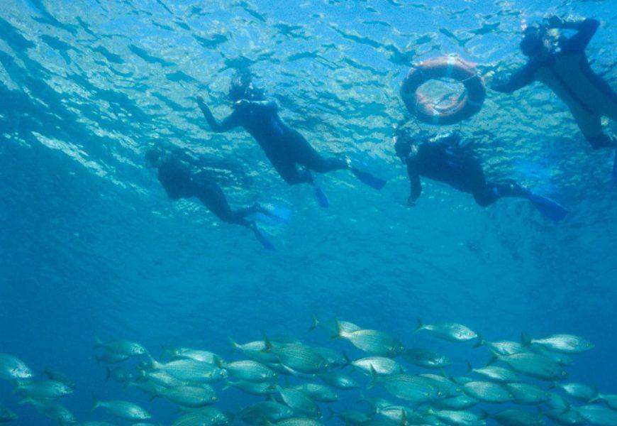 Medaqua inicia temporada amb noves rutes